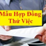 mau-hop-dong-thu-viec