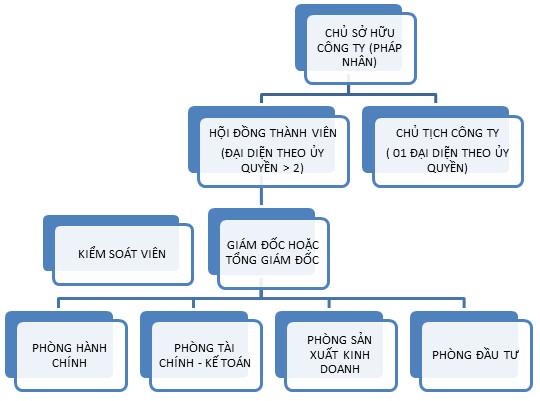 to chuc tnhh Tìm hiểu về công ty TNHH 1 thành viên là gì?