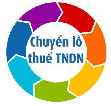 xac dinh lai lo chuyen lo thue tndn Hướng dẫn xác định lãi lỗ và cách chuyển lỗ thuế TNDN