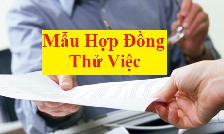 mau hop dong thu viec Mẫu hợp đồng thử việc 2018 mới nhất